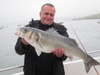 krzysztof-knopp-with-his-huge-bass-of-16-5-lbs-caught-on-the-28th-sept-from-the-lady-patricia-at-courtmacsherry