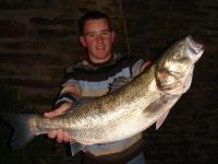 specimen-bass
