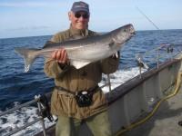 john-barnes-specimen-coalfish