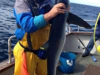 angling-2013-012