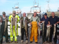 liverpool-and-belgian-anglers-with-a-fine-catch-of-ling-2011