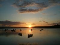 Beautiful sunset by Gerda.